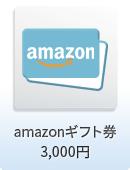 amazonギフト券 3,000円